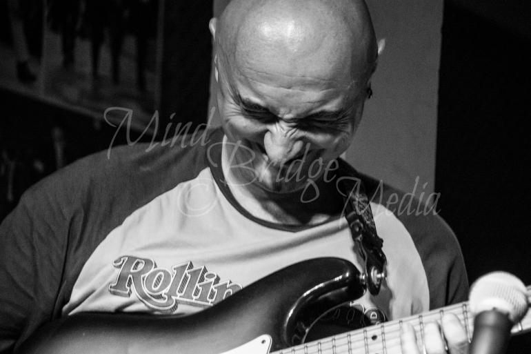 guitar player music concert